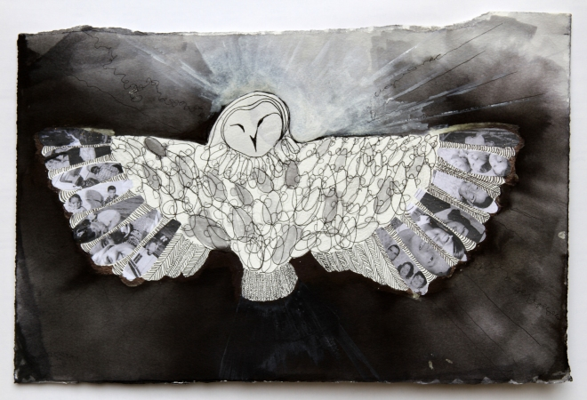 Owls2*